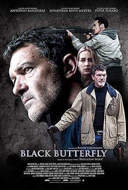 Black-Butterfly-52