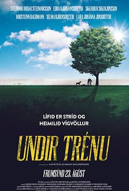 Under-the-Tree-51