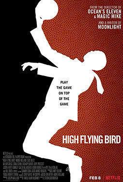 High-Flying-Bird-50