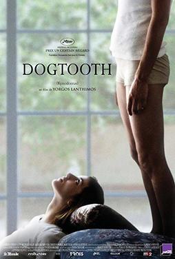Dogtooth-53