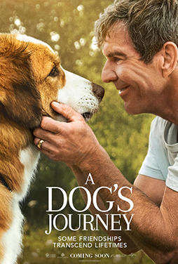 A-Dogs-Journey-50