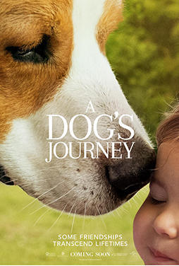 A-Dogs-Journey-51