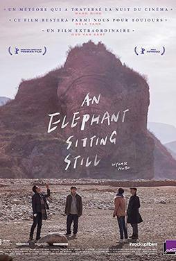 An-Elephant-Sitting-Still-54