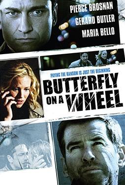 Butterfly-on-a-Wheel-52