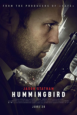Hummingbird-51