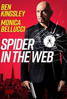 Spider-in-the-Web-52