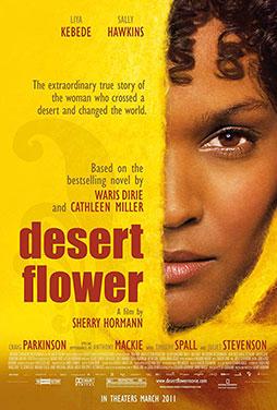 Desert-Flower-50